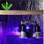 Módulo De Iluminação Led Full Spectrum 112w Grow Ufo Painel