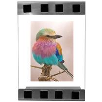 Porta Retrato Vidro Com Detalhes E Suporte Em Inox Escovado
