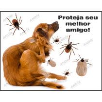 Coleira Anti-pulgas Carrapatos Cachorros E Gatos Frete Fixo