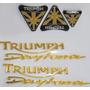 Adesivo Moto Triumph Daytona Resinado Full Tanque Carenagem