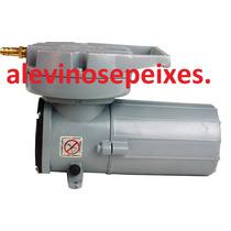 Compressor Mpq-906 Bat 120w 125l/min 12v. Transporte Peixes