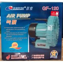Soprador De Ar Resun Gf120 - Compressor Turbina De Ar - 110v