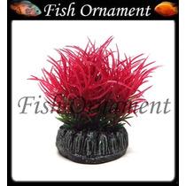 Enfeite Soma Planta Redonda Grama Vermelha 4cm Fish Ornament