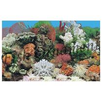 Painel Fundo De Aquario Boyu J01 50cm Fish Ornament