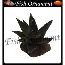 Soma 068101 Enfeite Resina Planta Cactus 104