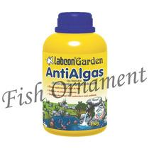 Alcon Labcon Garden Antialgas 1kg Fish Ornament