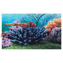Painel Fundo De Aquario Fundo Mar Recife 50cm Fish Ornament