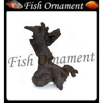 Enfeite Resina Soma Tronco Duo 112 Fish Ornament