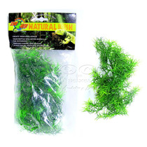 Zoomed Planta Artificial Small Cashuarina Bu-18