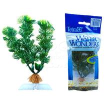 Planta Artificial Tetra Cabomba 6cm