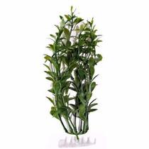 Enfeite P/ Aquário Planta Tetra Hygrophilia 30cm