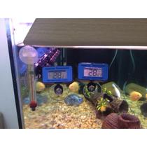 Termometro Digital Interno (aquario)