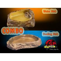 Comedouro + Bebedouro Répteis - Terrários - Iguana - Jabuti