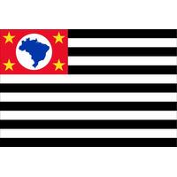 Bandeira Oficial De São Paulo Tam.22x33cm ( Motos E Carros )