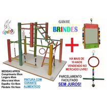 Kit Luxo Calopsita Feliz Playground Colorido + Brinquedo
