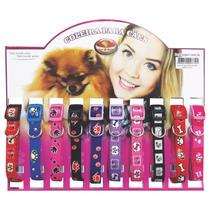 Coleira De Nylon Pet Cachorro Cães Raças - Pequeno Porte
