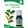 01 Óleo Essencial De Tea Tree - (melaleuca Alternifólia)