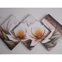 Super Promoção Telas, Quadros Decorativos De Flores