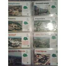 Coleção 49 Cartões Rara Série Municípios Paraná(telepar/bt)