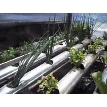Fita Metalizada P/ Hidroponia Horta Pvc Espuma Fenolica Muda