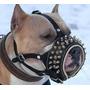 Focinheira Em Couro Spikes Boxer Pit Bull Rottweiler #q7vg