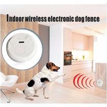 Cerca Eletrônica Invisível Interna Indoor - Cao E Gato