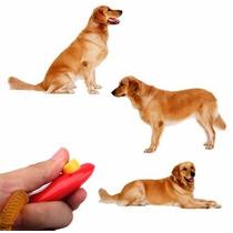 Clicker - Método De Adestramento Para Cães - Cliquer Clique