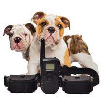 Coleira Adestramento P/ 2 Cães Controle Choque