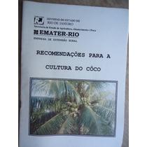 Livro - Recomendações Para A Cultura Do Côco Emater-rio - 38