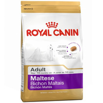 Ração Breed Health Nutrition Maltês 24 Adulto Royal Canin