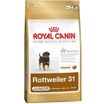 Ração Royal Canin Breed Health Nutrition Rottweller 31