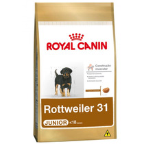 Ração Royal Canin Rottweiler 31 Junior - 12kg