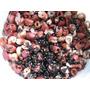 Besouros Do Amendoim ( 50 Unidades )