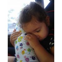 Travesseiro - Almofada Protetor Cinto De Segurança 50cm
