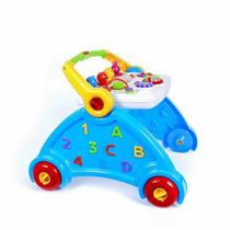 Brinquedo Andador Infantil Didático Poliplac Pronta Entrega