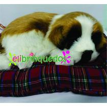 Filhote Cachorro Pelúcia São Bernardo Perfect Petzzz 20cm