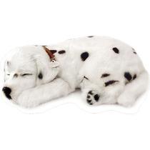 Filhote Cachorro Dalmata Que Respira Perfect Petzzz
