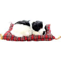 Cachorro Border Collie Perfect Petzzz Pelúcia 10cm