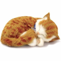 Filhote Gato Pelúcia Que Respira Orange Tabby Perfect Petzzz