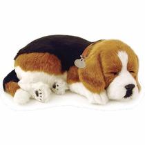 Filhote Pelucia Cachorro Beagle Respira Perfect Petzzz