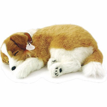 Filhote Pelucia Cachorro Lassie Que Respira Perfect Petzzz