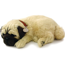 Cachorro Pug Que Respira Perfect Petzzz Filhote De Pelúcia