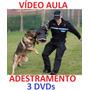 Adestramento De Cães Em 3 Dvds Para Todos Os Cães Cachorro