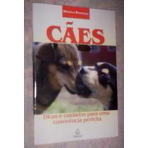 Cães Dicas E Cuidados Para Uma Convivência Perfeita