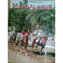 Revista - Mangalarga Ano 3 - 11 - 1995 - Circuito Paulistano