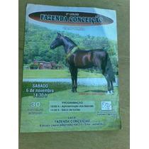 Folheto S Cavalo - 3° Leilão Fazenda Conceição - Campolina