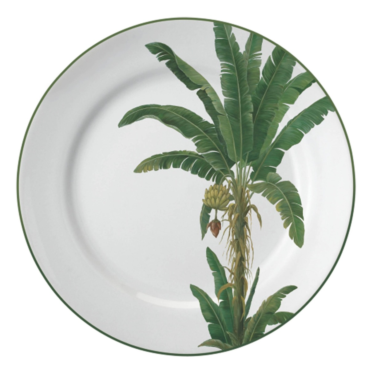 Aparelho De Jantar Palmeiras Porcelana 30 Peças Schmidt R$ 1.139 90  #64734D 1200x1200