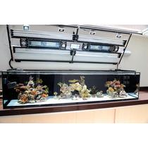 Fabrica De Aquários Aquariumreef (aquário Sob Medida 6mm)
