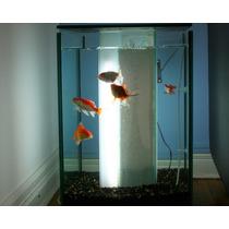 Aquario- Cachepo- Decorativo Para Sua Casa.