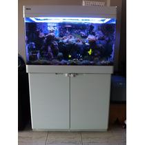 Novo Preço - Aquário Red Sea Max 250 Litros Branco Com Móvel